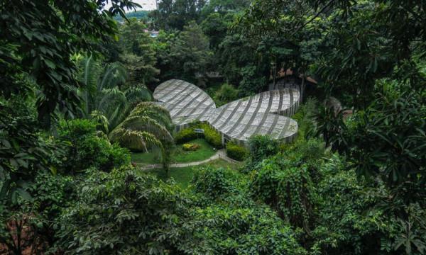 """إبداعات الحجر.. عالم كولومبي يحول منزله إلى """"جنة نباتات"""""""