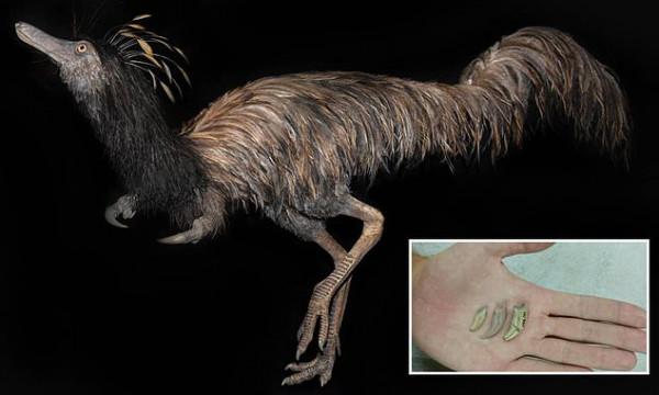 """""""كابتن هوك"""".. آخر الديناصورات التي عاشت على الأرض"""