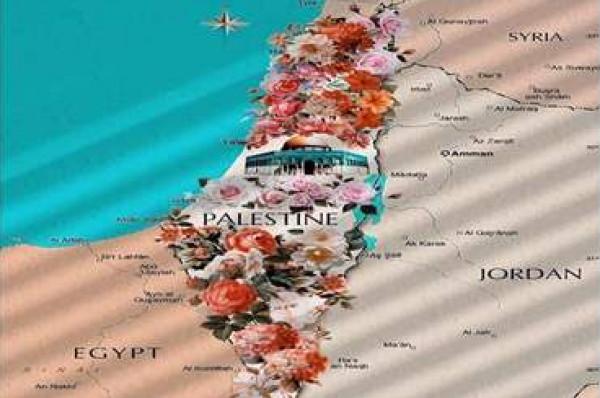 فنانات يتضامن مع فلسطين ويستنكرن حذفها عن خارطة جوجل دنيا الوطن