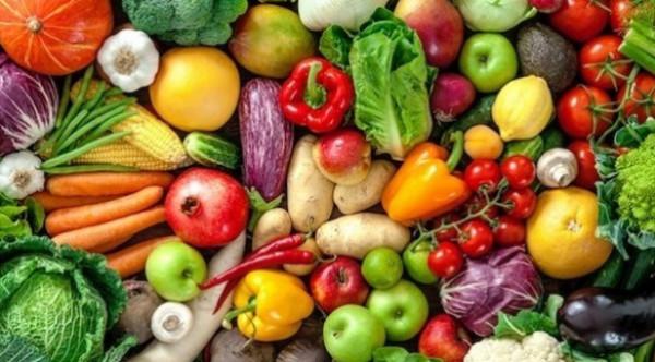 كيف جاءت أسعار الخضراوات والفواكه في غزة
