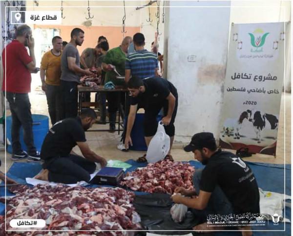 """جمعية """"البركة"""" الجزائرية توزع أضاحي على أكثر من 10 آلاف عائلة فقيرة من غزة"""