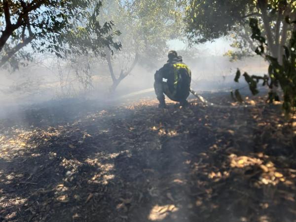 اندلاع النيران بأراضٍ زراعية إثر إطلاق الاحتلال قنابل صوت جنوب قلقيلية