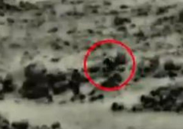 """إسرائيل تكشف تفاصيل جديدة حول """"خلية الجولان"""""""