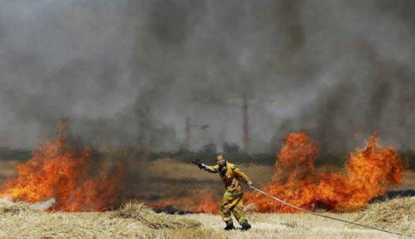 شاهد: 19 حريقاً اندلع بمستوطنات غلاف غزة منذ الصباح بفعل البالونات الحارقة