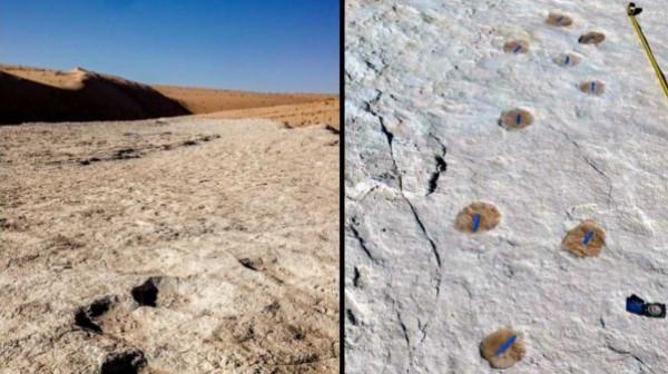 اكتشاف آثار أقدام لبشر وحيوانات مفترسة تعود لأكثر من 120 ألف سنة