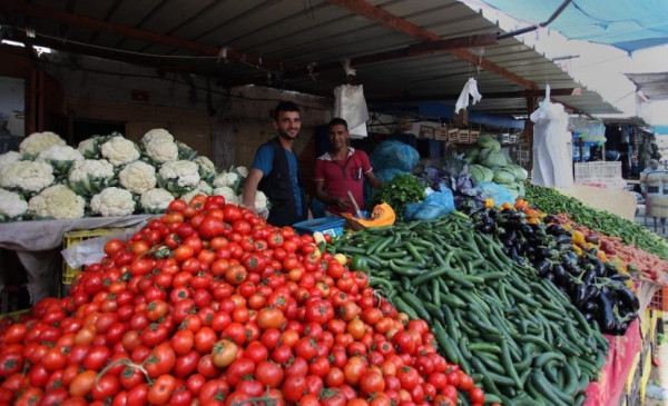 طالع القائمة المحدثة لأسعار الخضروات والدجاج واللحوم في غزة