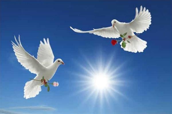 الذكرى الـ 30 لليوم العالمي للسلام