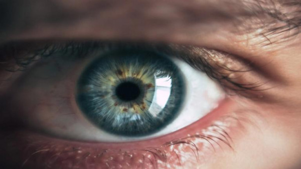 بدء أولى التجارب السريرية البشرية لعين إلكترونية