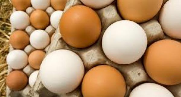"""""""أزمة بيض في لبنان"""".. إليكم التفاصيل"""