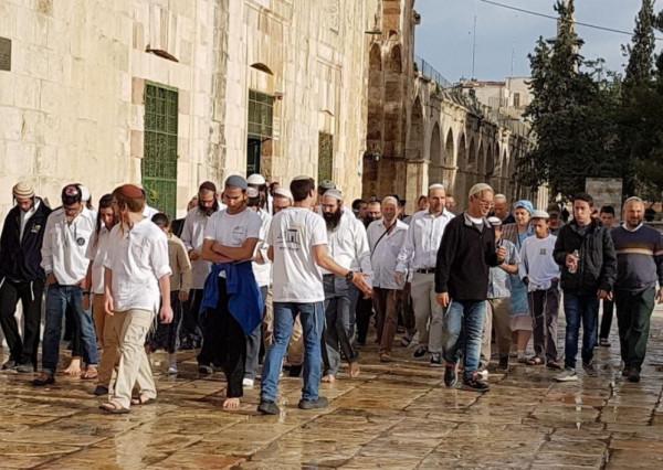 جماعات الهيكل المزعوم تدعو لتوسيع اقتحامات الأقصى