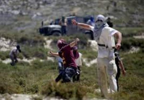 (الانسان) يُدين جرائم واعتداءات المستوطنين على الفلسطينيين العزل