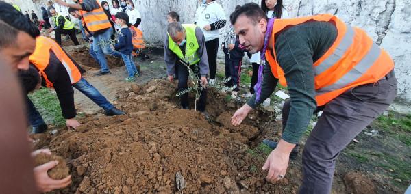 عائدون الكشفية تحيي يوم الشهيد الفلسطيني بزراعة أشجار الزيتون تحت شعار (أحياء يرزقون)