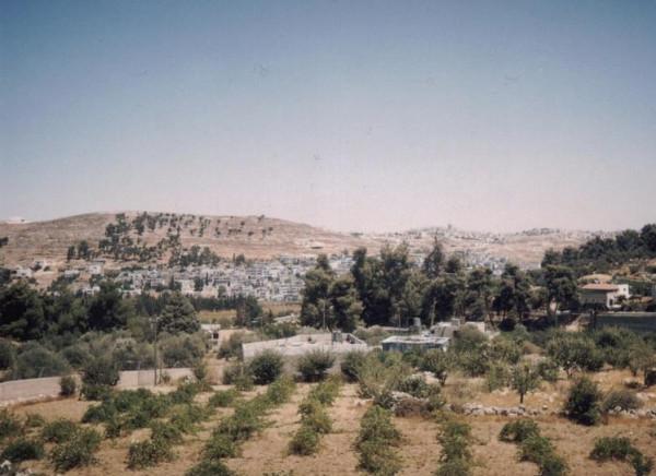 إيطاليا تدعو إسرائيل لإعادة النظر ببناء وحدات استيطانية في الضفة الغربية