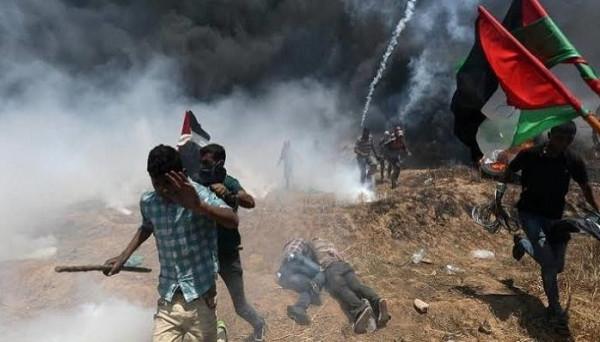 فلسطين تُعلق على قرار المحكمة الجنائية الدولية حول التحقيق بجرائم الاحتلال