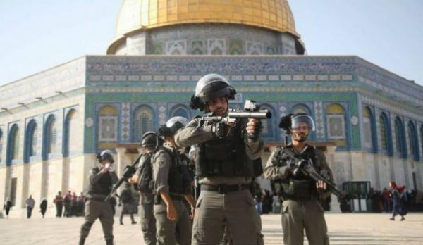 """""""الإنسان"""" يدين اعتداءات المستوطنين ضد الفلسطينيين ويحمل الاحتلال كامل المسؤولية"""