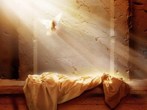 مصري ذهب لزيارة قبر والده فاكتشف اختفاء الجثة.. إليكم التفاصيل