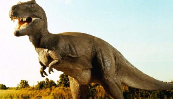 شاهد: مستخدم إنترنت يكتشف هيكل عظمي مرعب لديناصور في غرفة على خرائط جوجل