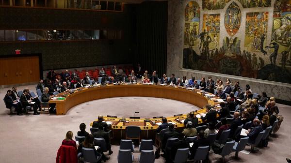 نائب مصري: ندعو مجلس الأمن لتوفير الحماية الدولية للشعب الفلسطيني