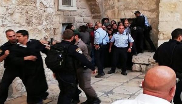 """""""المرصد العربي لحقوق الإنسان"""" يطالب بتوفير الحماية للشعب الفلسطيني"""