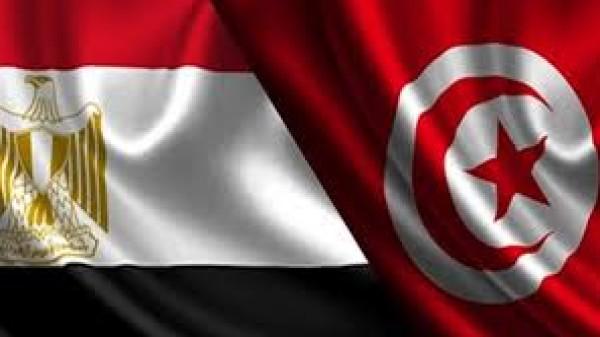 مصر وتونس تبحثان التحرك العربي في مجلس الأمن