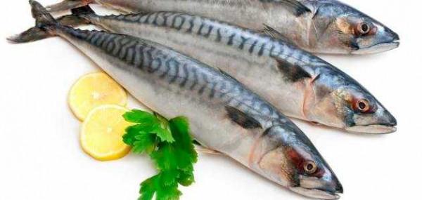 لتحمي نفسك من هذا المرض الخطير.. تناول علبتين من سمك السردين أسبوعيا