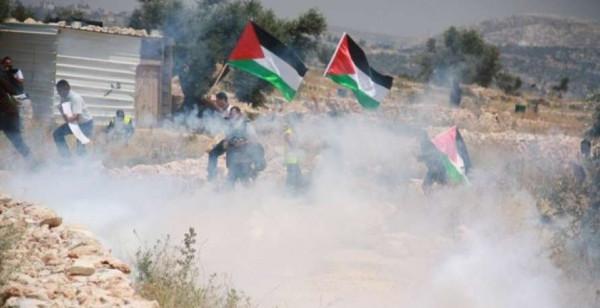 """اصابات بالاختناق بمواجهات مع الاحتلال في قرية """"كفر قدوم"""""""
