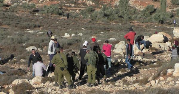 إصابة مواطنة في هجوم للمستوطنين على قرية التوانة