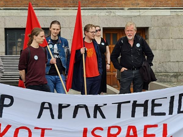 مسيرة تضامنية مع فلسطين في مدينة فايلي الدنمركية