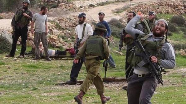 مستوطنون يعتدون على صحفيين بتل رميدة وإصابة مواطن بالتوانه جنوب الخليل