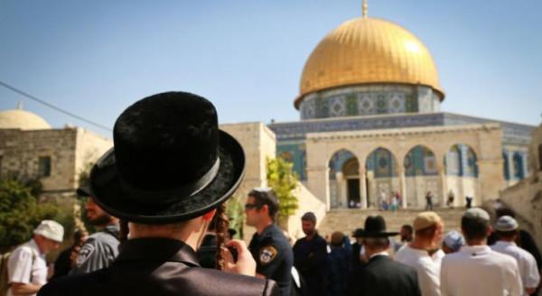 مستوطنون يقتحمون الأقصى بحماية مشددة من شرطة الاحتلال