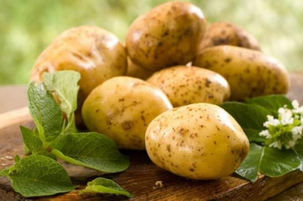 تعرف على الأضرار والمخاطر الجسيمة لتناول البطاطس بكثرة