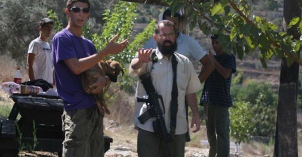 مستوطنون يقطعون أعمدة هاتف جنوب نابلس