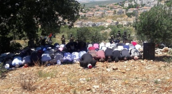 عشرات المواطنين يؤدون صلاة الجمعة في أراضيهم المهددة بالاستيلاء شرق يطا