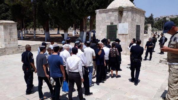 أكثر من 80 مستوطنا اقتحموا المسجد الأقصى اليوم