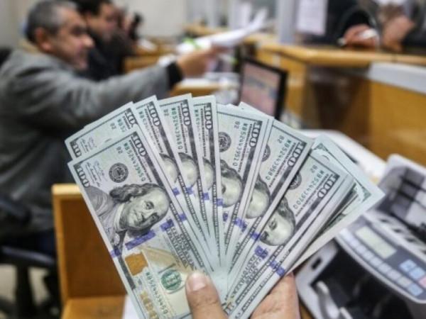 مجدلاني: 100 ألف مواطن سيستفيدون من المنحة القطرية لمدة أربعة أشهر