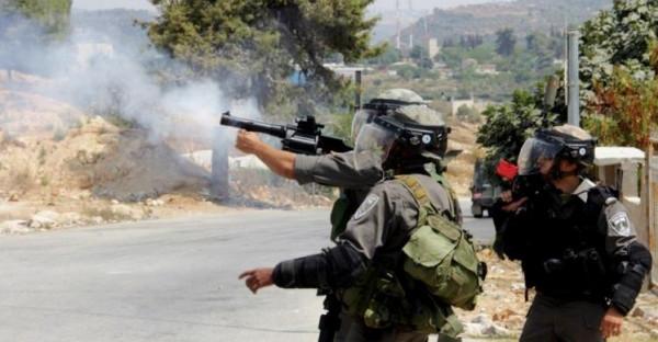 عشرات الإصابات خلال المواجهات مع الاحتلال قرب جبل صبيح
