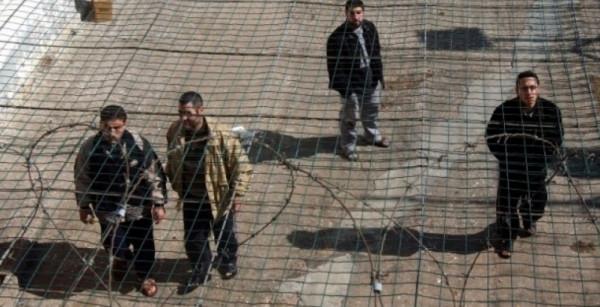 وقفة تضامنية مع الأسرى الفلسطينيين بسجون الاحتلال في مدينة (هيلسينغبورغ) السويدية