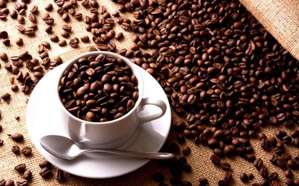 علماء يبتكرون أول قهوة معدلة وراثيا