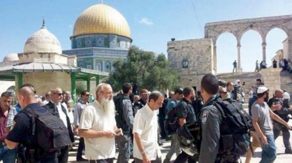 مستوطنون يواصلون اقتحاماتهم المكثفة للمسجد الأقصى