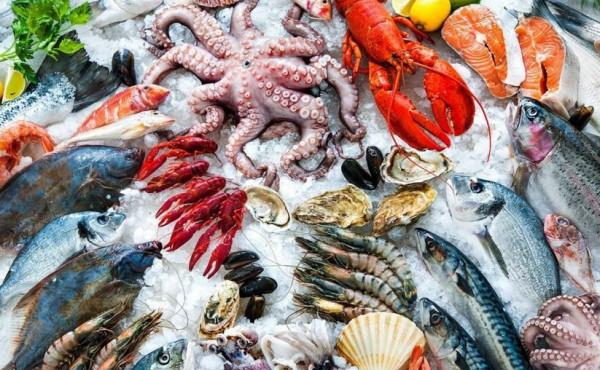 هذه الأنواع من الأسماك تسبب زيادة في الوزن.. تجنبوها