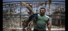 خسائر تقدر بـ300 ألف دولار.. حديقة حيوانات غزة تعاني أيضاً آثار العدوان الإسرائيلي