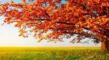 فلكيا في فلسطين… الخريف يبدأ الثلاثاء