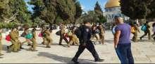 مجندات بلباس عسكري ومستوطنون يقتحمون ويدنسون المسجد الأقصى