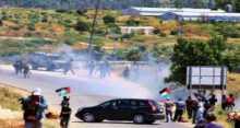 أبو عين: كل منطقة شكلت لجانا شعبية وقاومت الاحتلال انتصرت