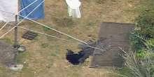بالصور.. الأرض تبتلع سيدة أسترالية والمياه تغطي جسمها
