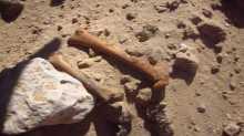 مافيا اثار مصرية مغربية تنبش القبور بالصعيد لاستخراج الاثار الفرعونية