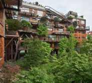 منزل يستخدم 150 شجرة لحماية السكان من الضجيج!
