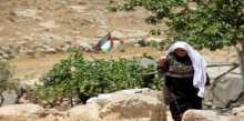 إسرائيل تطلب من المحكمة المصادقة على هدم قرية سوسيا الفلسطينية