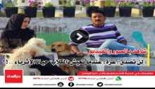 """شاهد بالصور والفيديو ..(لن تُصدّق) غزة: عندما تعيش """"الكلاب"""" حياة الأثرياء ..!؟"""