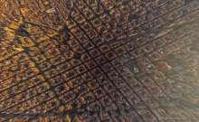 المدن كما لم تراها من قبل ...قمة الإبداع والإحتراف في التصوير